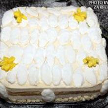 torta sa moussom od pjenusca